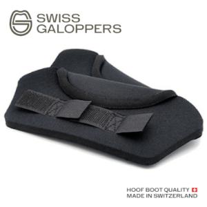 Swiss Galoppers Ballenschutz_logo_web