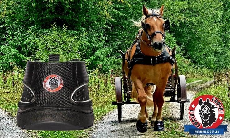 Equine-Werbung
