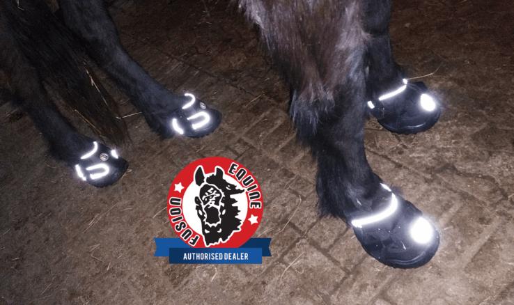 Equine-Fusion-reflektierend