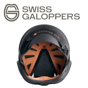 swiss-oben_logo neu_web