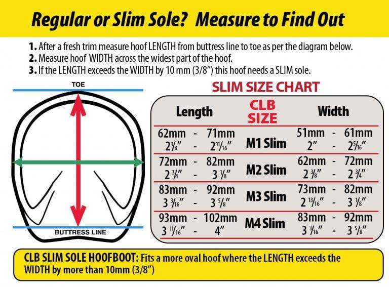 cavallo_CLB-Slim-chart-measuring-info