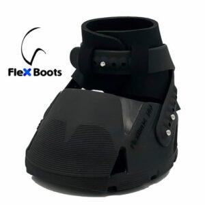 Flex Hoof Boots_web
