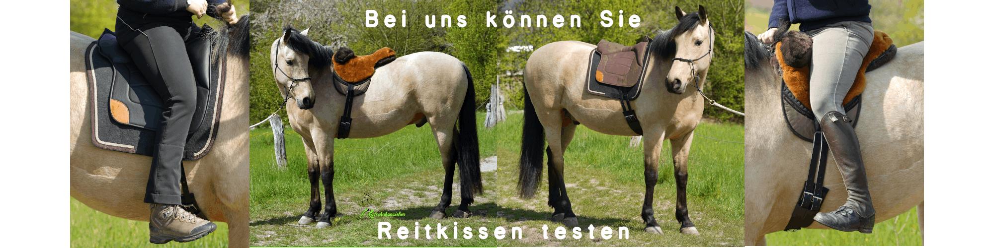Reitkssen-Slider2021_2_web