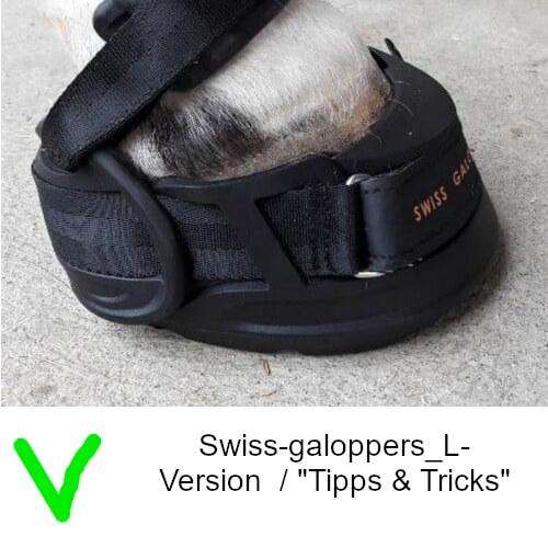 Swiss-galoppers_L-Version - RICHTIG für diesen Huf siehe Tipps & Tricks2_web