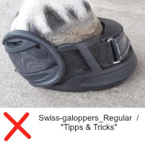 Swiss-galoppers_Regular - FALSCH für diesen Huf siehe Tipps & Tricks2_web