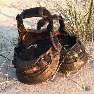swiss-galoppers-auf-sand